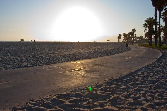 Venice Paloma Suites: Sunset