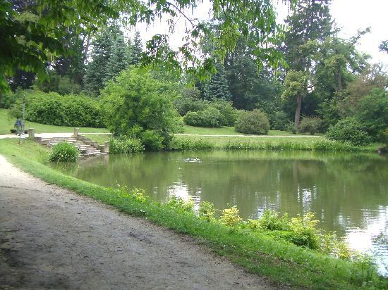 Lednice, Tsjekkia: Vista del lago