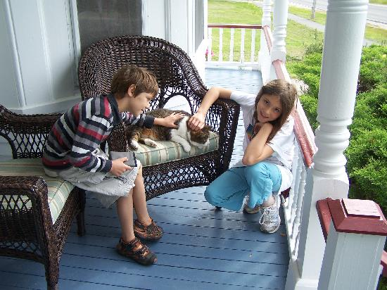 A Seafaring Maiden Bed and Breakfast: on the front porch with the host cat