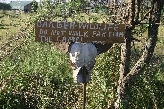 Serengeti Wild Camp: Wildcamp perimeter
