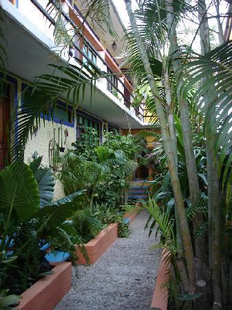 La Cabaña de Puerto Angel: le patio intérieur pour accéder aux chambres