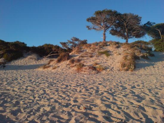 Hotel Mistral: Way back from the beach