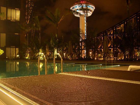 คราวน์ พลาซ่า โฮเต็ล ชางกี แอร์พอร์ท: ホテルのプール
