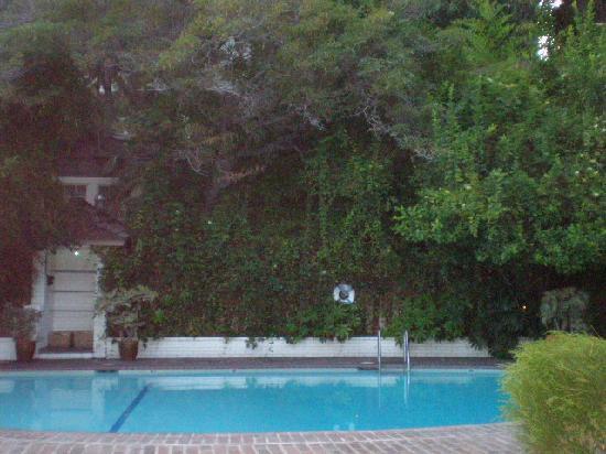 Chateau Marmont : Pool