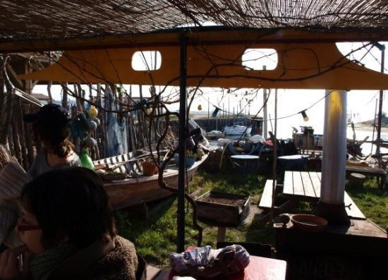 Andernos-Les-Bains, Frankreich: fin du parcours: la meilleure cabane d'huitre du bassin!