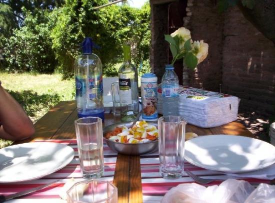 Baradero, Argentina: la mesa con rosas del jardin
