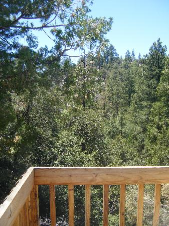 ‪‪Strawberry Creek Bunkhouse‬: back balcony‬