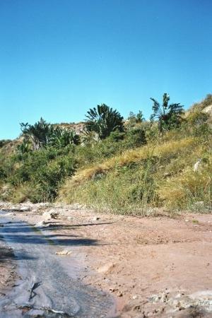 Mahajanga, Madagascar: Majunga, Madagascar Le cirque rouge