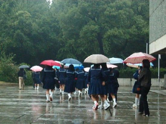 Tokio, Japón: A gaggle of japanese school girls in Tokyo