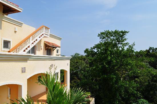 Villa Delfin Roatan: House