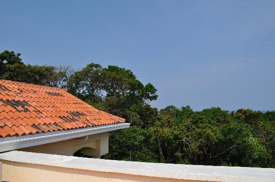 Villa Delfin Roatan: Roof