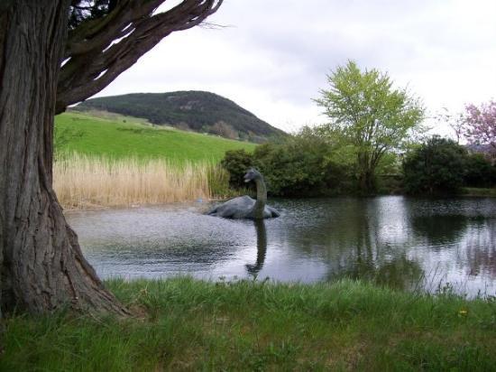 Loch Ness: Ich habe Nessie gesehen !!!!!!