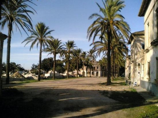 San Fernando, สเปน: Arraial de Sancti Petri