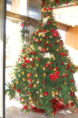 Mestre, Italien: the Christmas tree in the hotel lobby