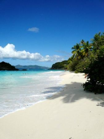 Trunk bay bvi