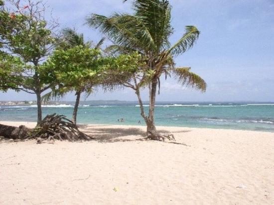 Basse-Terre Φωτογραφία