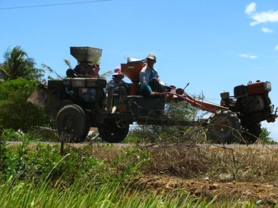 Dalat, Vietnam: Y'a pas que moi :)