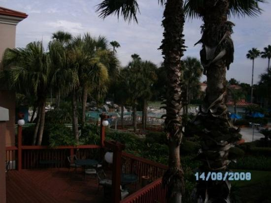 Fairfield Inn & Suites Orlando International Drive/Convention Center Bild