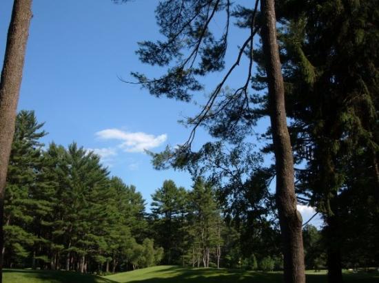 Saratoga Springs Photo