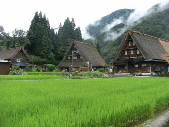 Suganuma Gassho Community: すぐ後ろに山が迫った村内の様子