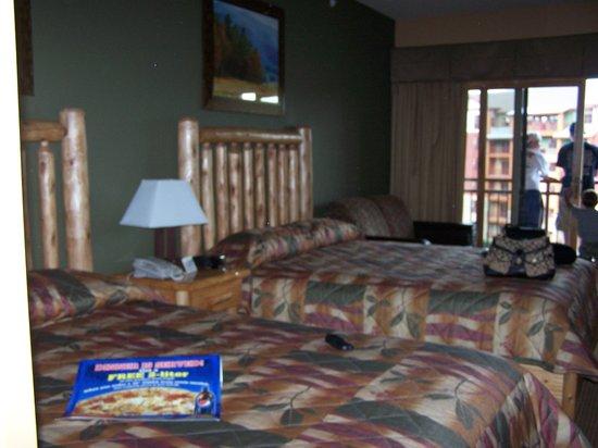 Wilderness at the Smokies Resort: Room