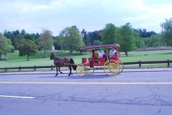 Lake George, NY: or ride a horse.............