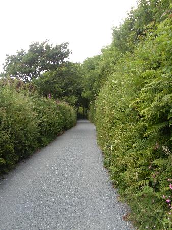 The Old Rectory Hotel: The hotel is off this very pretty lane