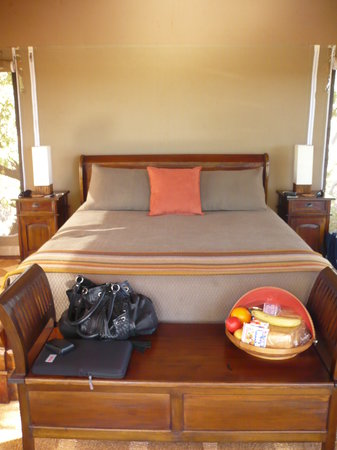 Coconutz Bed & Breakfast: inside the tent