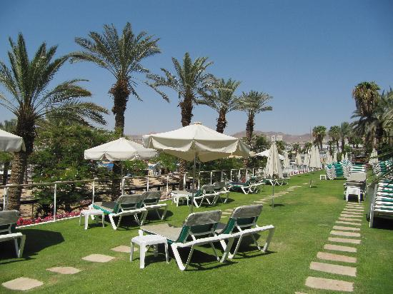 Royal Beach by Isrotel Exclusive Collection: Grassy area above the pool.