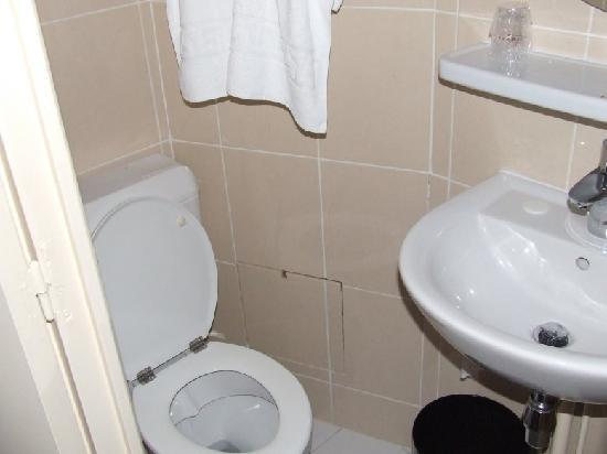 Hotel de la Place des Alpes: Cambio asciugamani quotidiano, bagno rifatto da poco e sempre pulito
