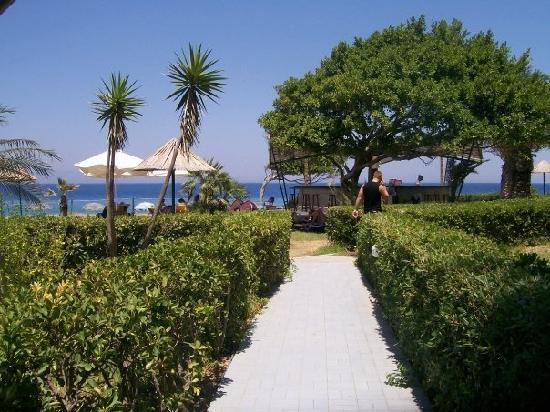 Area Blue Beach Hotel: Walk to the beach