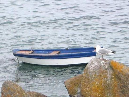 Douarnenez, ฝรั่งเศส: Bord de mer (29).