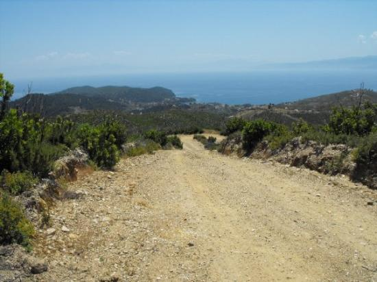 Skiathos, Greece: The main road from Panaghia to Aselinos