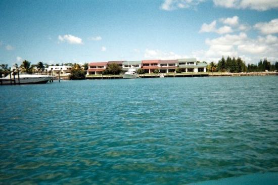 Official Grand Bahama Island Bahamas Tourism Guide