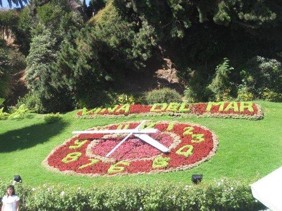 Flower Clock (Reloj de Flores) Photo