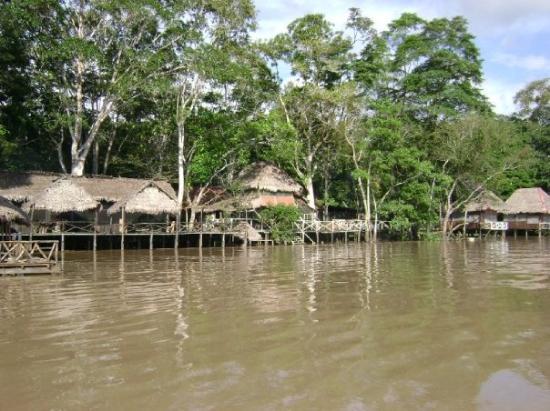 Pucallpa, Peru: El Pandisho ecolodge, hotel del cocaine... mostro!!!