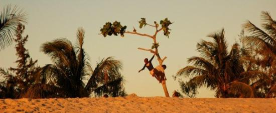 Beira, Moçambique: tree children