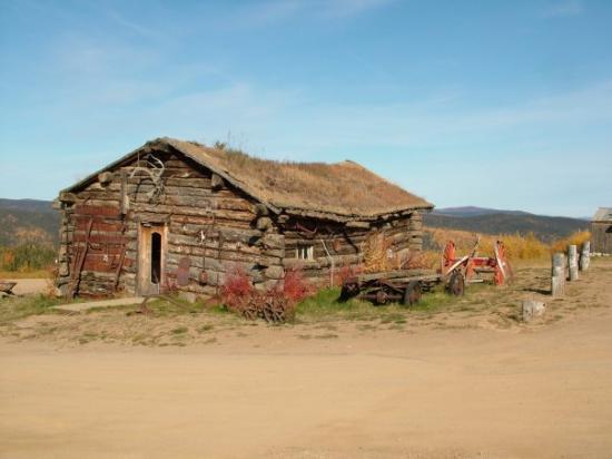 Denali National Park Hotels Reviews