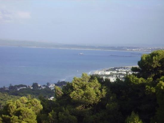 Bizerte, ตูนิเซีย: Panorama di Biserta dall'escursione in quad