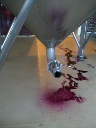 Ampora Wine Tours ภาพถ่าย