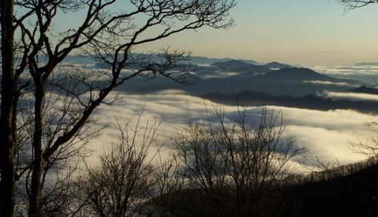 Maggie Valley, Carolina do Norte: Another amazing morning at 5500ft. above sea level!