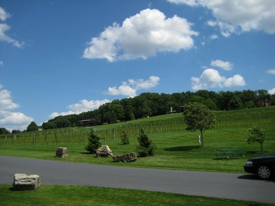 ‪Clover Hill Vineyards & Winery‬