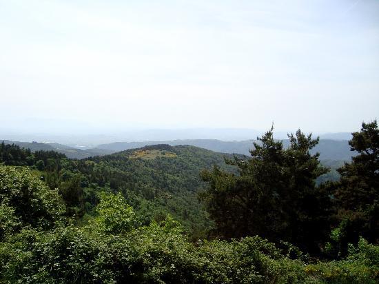 Chateau d'Urbillac : la vue