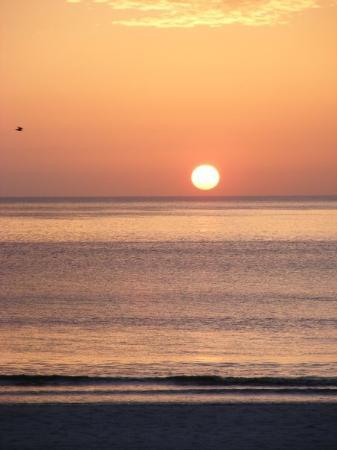 นิวสมีร์นาบีช, ฟลอริด้า: Sunrise