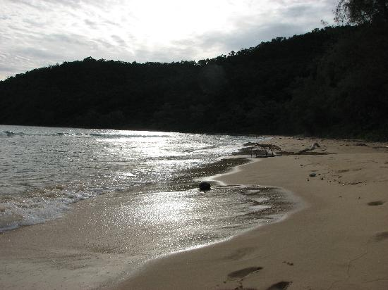 Lazy Beach : beach