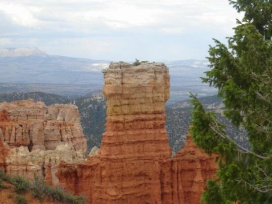 Inspiration Point: Bryce , a hoodoo