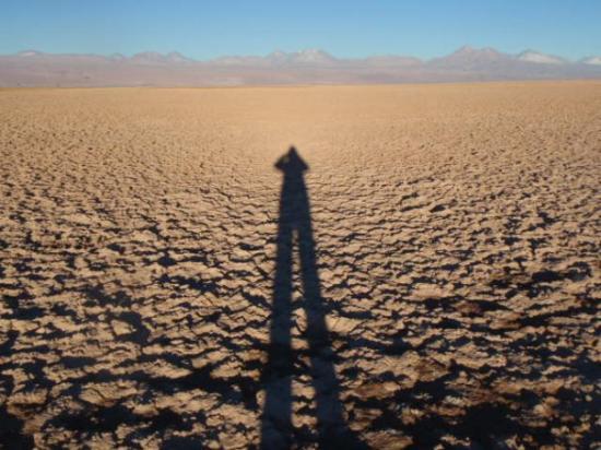 Salar de Atacama Picture