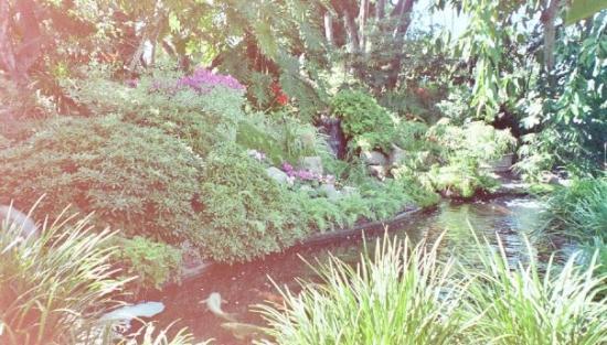 San Diego, CA: Meditation Garden @ Self Realization Fellowship In  Encinitas, CA