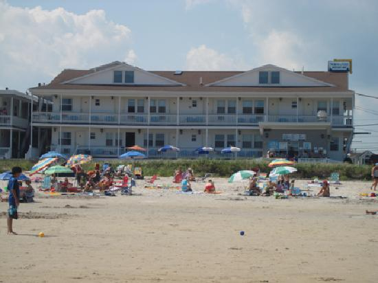 Normandie Oceanfront Motor Inn: Normandie from the beach