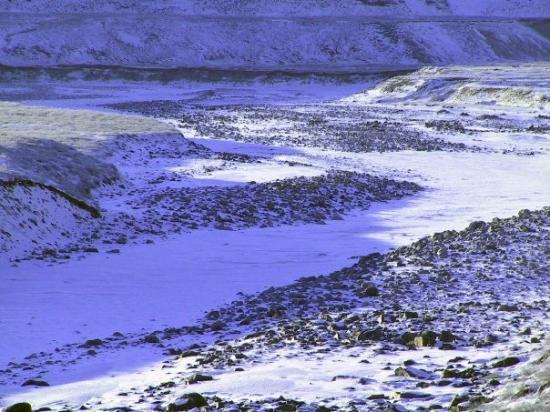 Flodseng om vinteren. Kangerlussuaq (Søndre Strømfjord) 2009